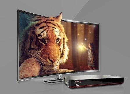 The Leader in HD TV - HENDERSONVILLE, North Carolina - STANS ELECTRONICS - DISH Authorized Retailer